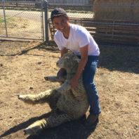 ARCS Scholar Noe Gomez holding a lamb on a farm