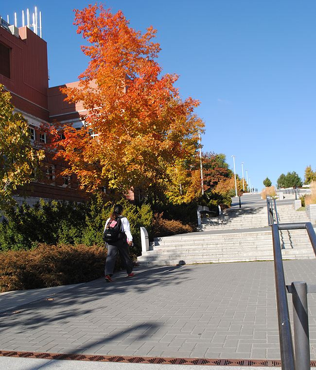 connors-sidewalk