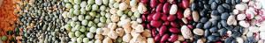 Dry-bean-assortment-700