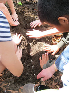 Roosevelt-Elementary-planting-250