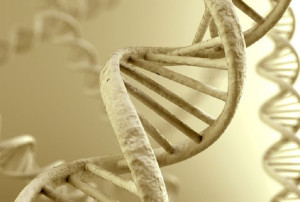 ancient-DNA-from-Photos-dot-com