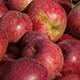 cider-apples-80