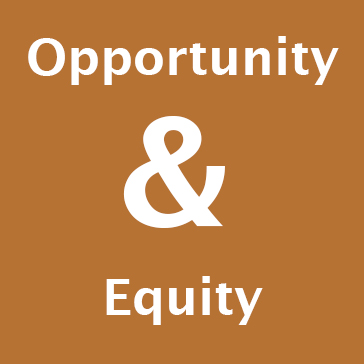 WSU color palette orange Opportunity and Equity