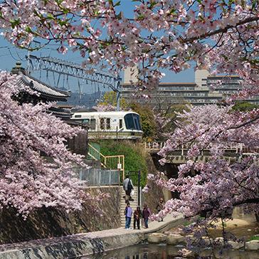 Nishinomiya 364x364